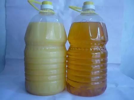 辨认食用油是否含棕榈油